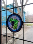 Stained glass grape medallion